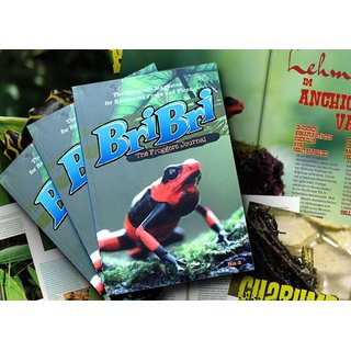 BriBri - The Froggers Journal No. 2 ( Deutsch & Englisch )
